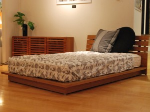 FB LOW BED (RADDER TYPE)