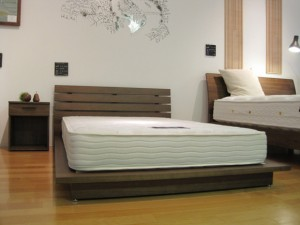 FB  BED LOW TYPE & SIMMONS MATTRESS